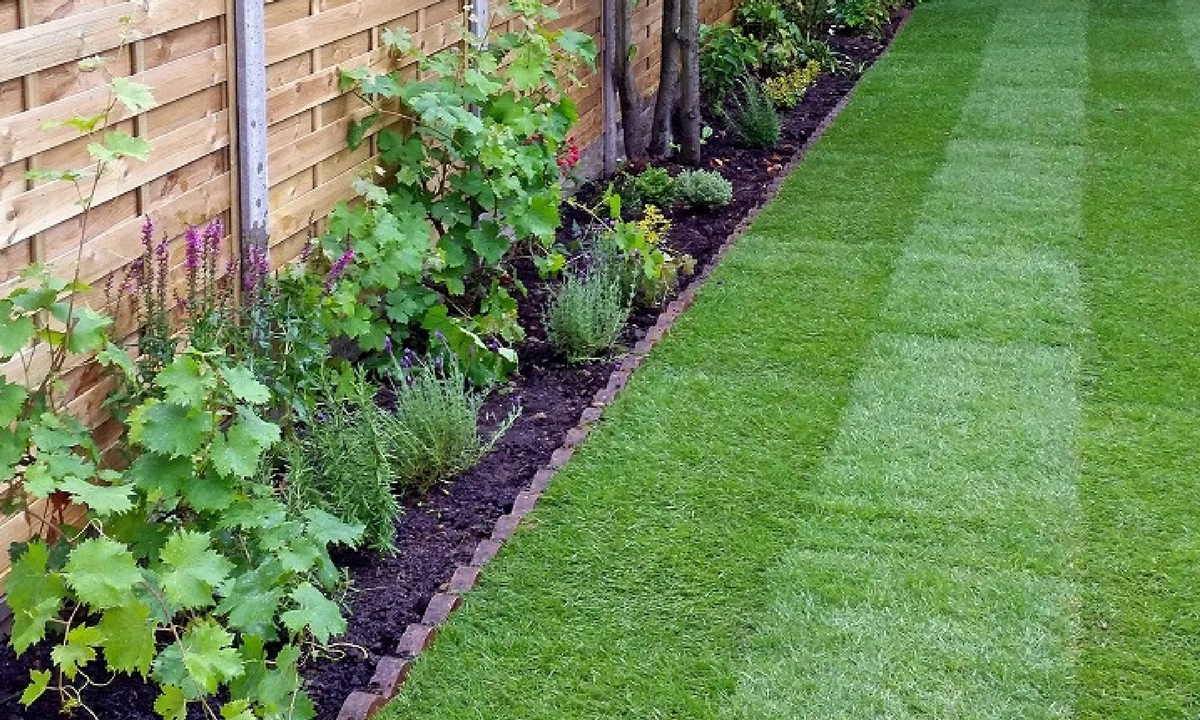 Turf and Artificial Turf Hull